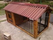 Будки для собак и собачек в Ташкенте. Элитное жилье для собак